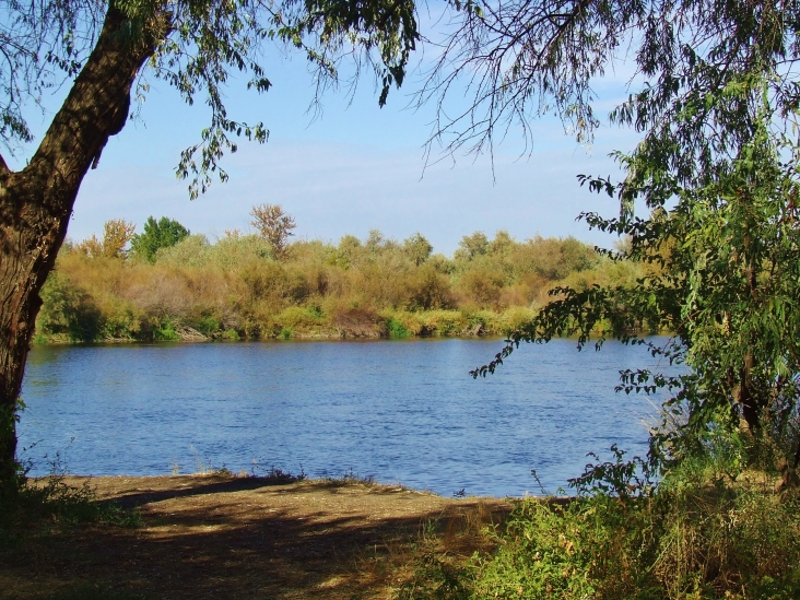 Following the path from the entrance of the Wildlife Area you'll eventually get to a great view of the Yakima River.